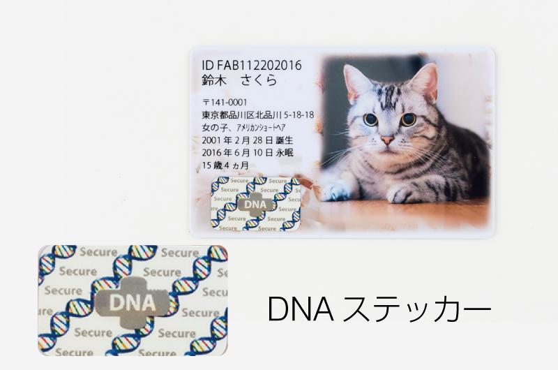 DNAステッカー